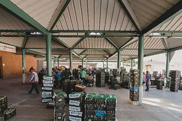 mercat de la fruita